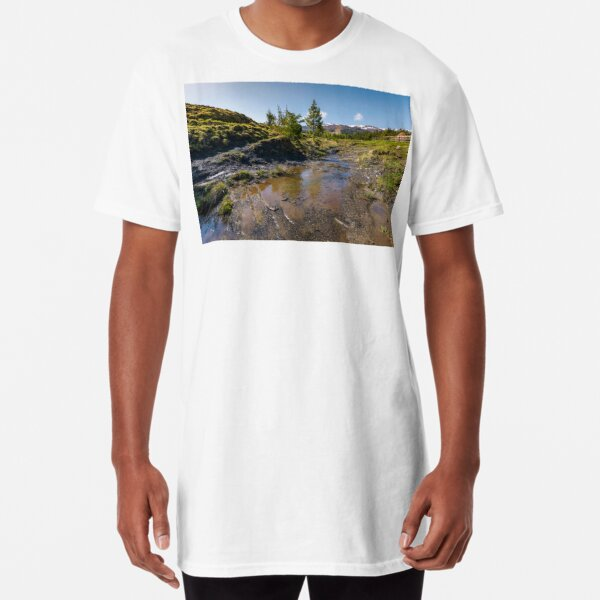 rural scenery in Ukrainian alps Long T-Shirt
