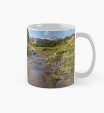 rural scenery in Ukrainian alps Mug