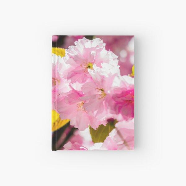 Sakura flower blossom in springtime Hardcover Journal