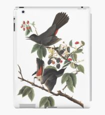 Grauer Catbird - Audubon Vögel von Amerika, Dumetella carolinensis iPad-Hülle & Klebefolie