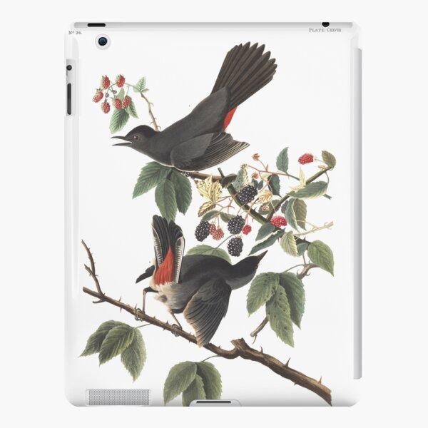 Gray Catbird - Audubon Birds of America, Dumetella carolinensis iPad Snap Case