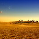 Earling morning Dimboola. by Victor Pugatschew