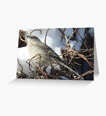 Mockingbird in the Snow Greeting Card