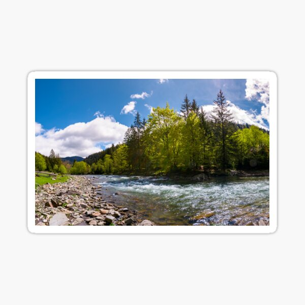 forest river in mountains Sticker