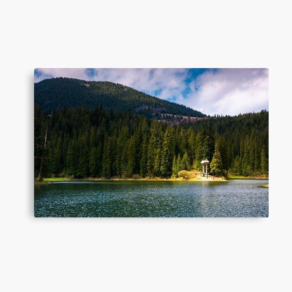 lake in Synevyr national park in springtime Canvas Print