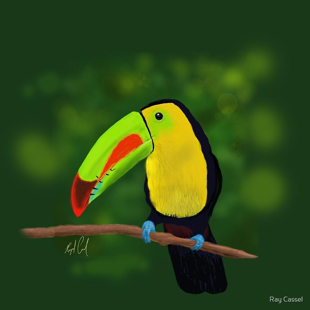 Keel-Billed Toucan by Ray Cassel