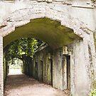 Highgate Cemetery, London - West Cemetery by arosecast