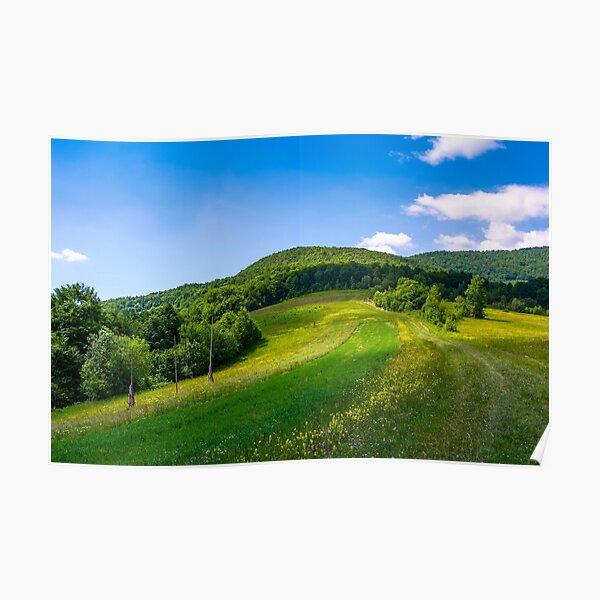 grassy rural fields on mountain slopes Poster