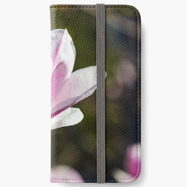 blossom of magnolia tree in springtime iPhone Wallet