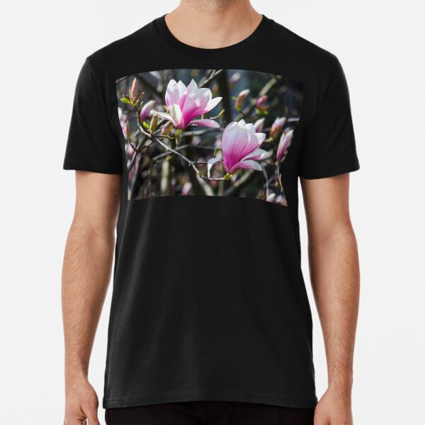 blossom of magnolia tree in springtime Premium T-Shirt