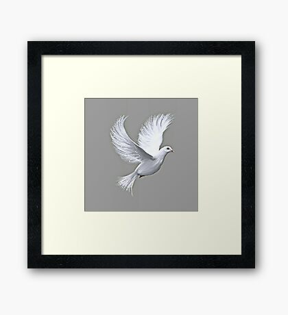 Dove Of Peace Framed Print