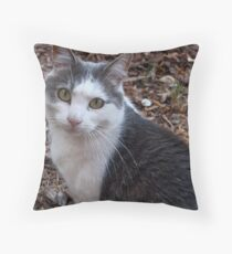 Co-operative Cat Throw Pillow