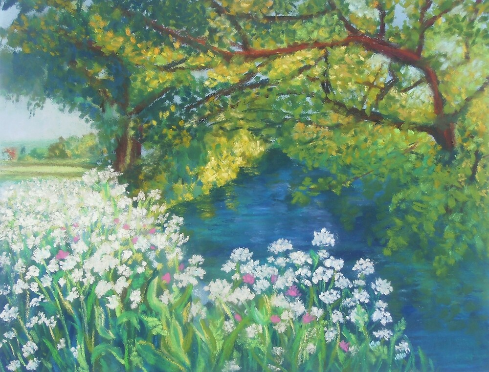 River Cerne, Dorset by Susan Scott