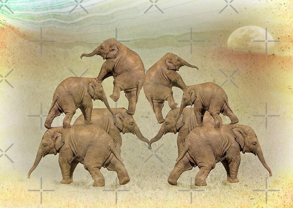 Elephant Acrobatics by CarolM