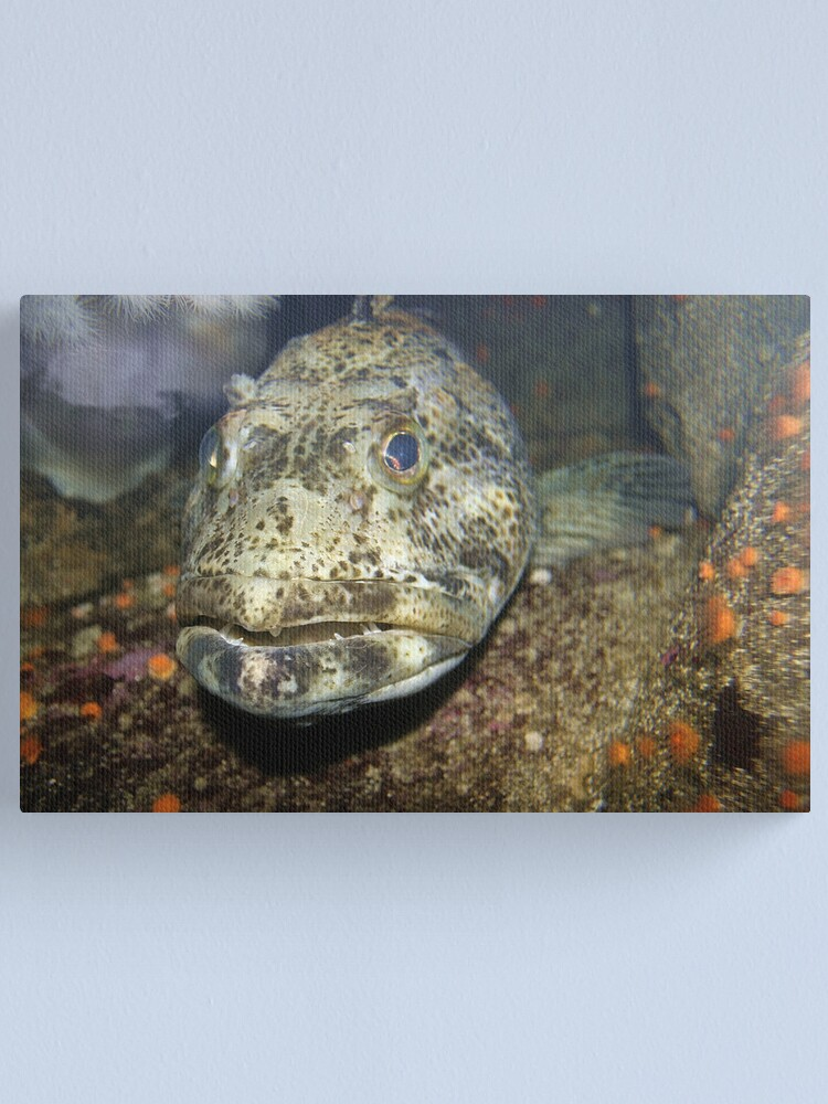 Alternate view of You sure you like fish? Canvas Print