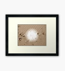 Which path will you choose?? Framed Print