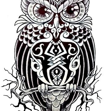 Black and white owl by AnderArtes