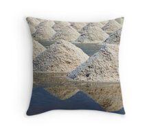 Salt Harvest Throw Pillow