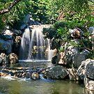 Waterfall by Richard  Windeyer