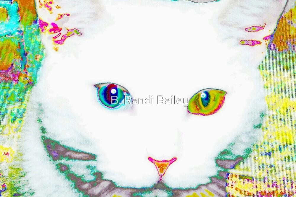 Everwhite, the cat by ♥⊱ B. Randi Bailey