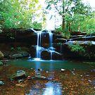 Hidden Falls by Em Donaldson