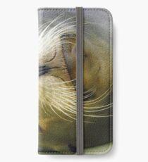 Sleepy Californian Sealion iPhone Wallet/Case/Skin