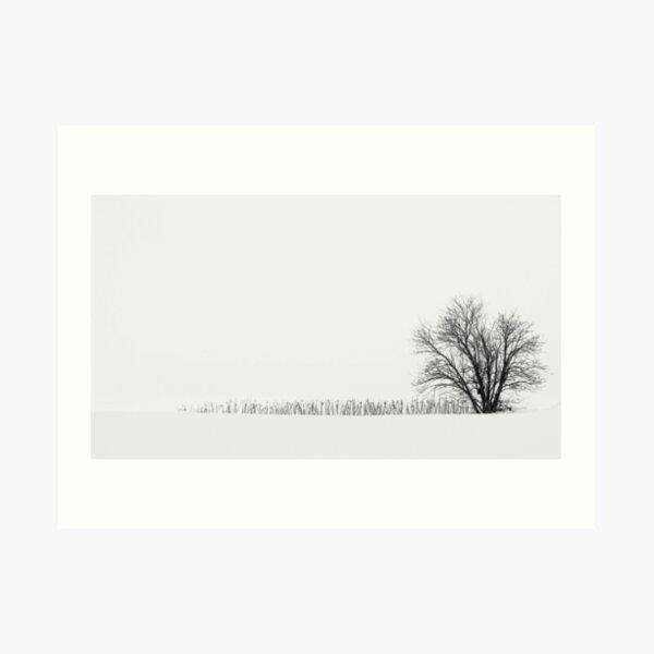10.3.2018: Lonely Rowan Tree Art Print