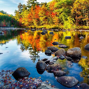 Autumn Colors Reflections  by ozeg