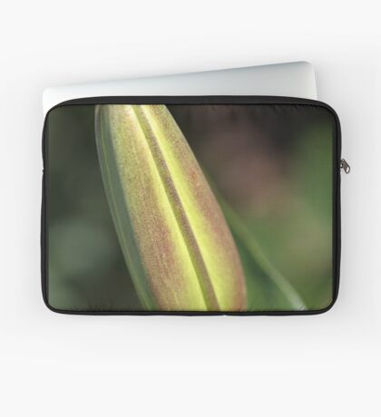 She Buds Then Flowers - Lily Bud Laptop Sleeve