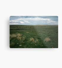 Wadsworth Moor West Yorkshire England 19840603 0058m Metal Print