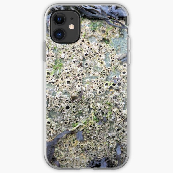 Barnacles iPhone Soft Case