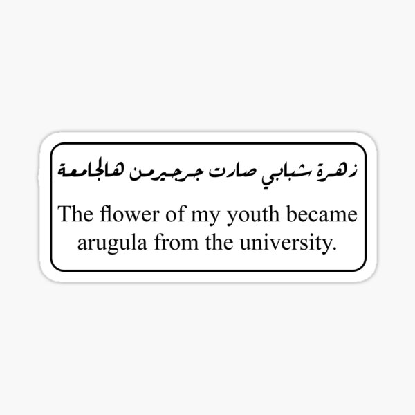 زهرة شبابي صارت جرجير من هالجامعة - ترجمة حرفية Sticker