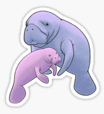 Manatee Jamboree Sticker