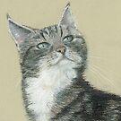 Tabby Cat by Kate Wilkey