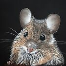 Woodmouse by Kate Wilkey
