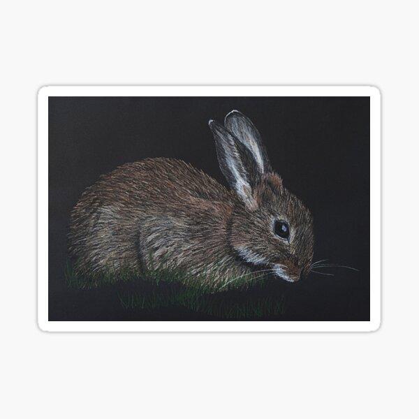Wild Rabbit Sticker