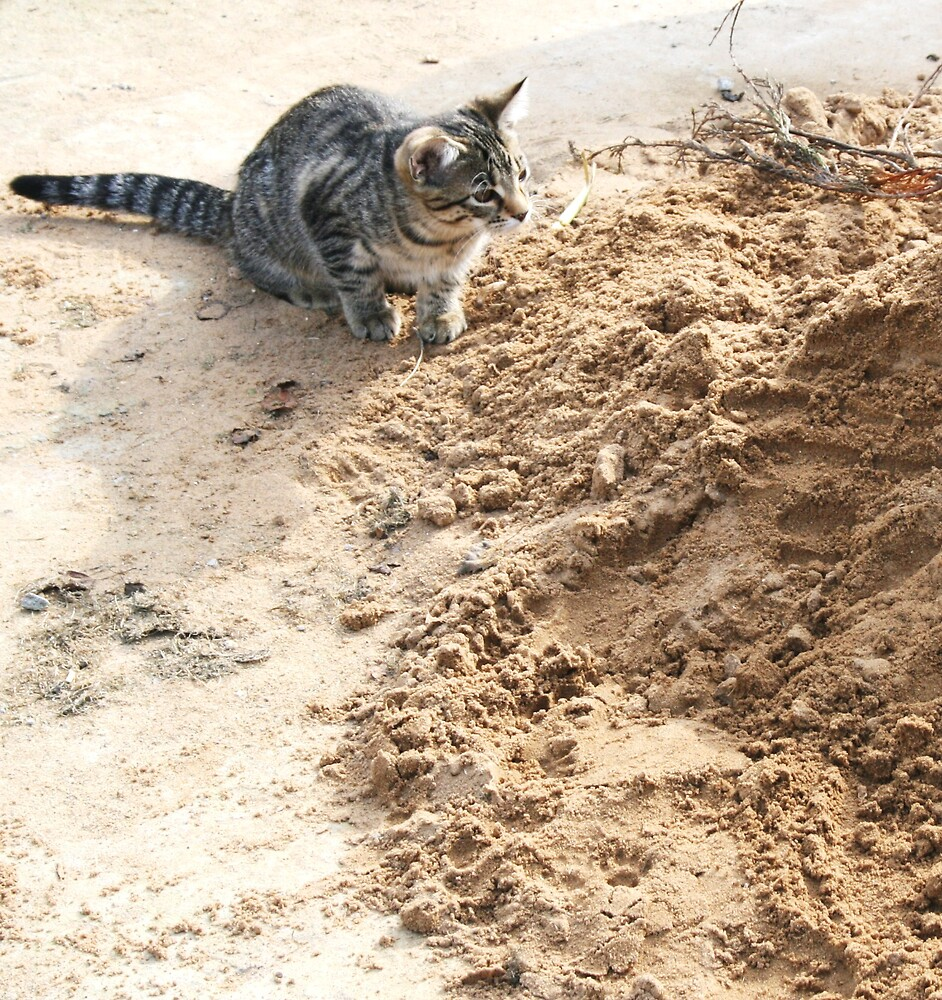 Mia playing in the sand by Jessie-Kay