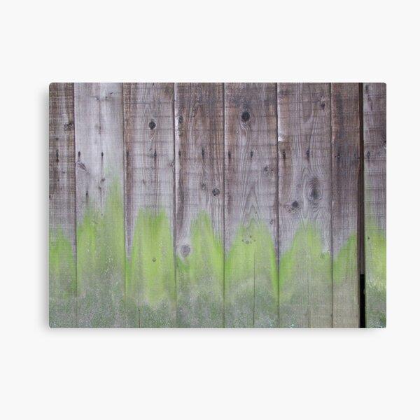 Shrine walls (3 of 4) Canvas Print