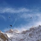 Soaring Above the Alps by Kasia-D