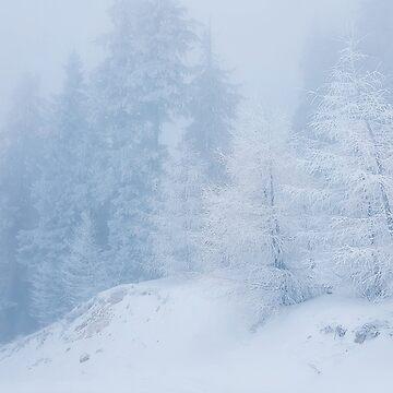 frozen fog by psychoshadow