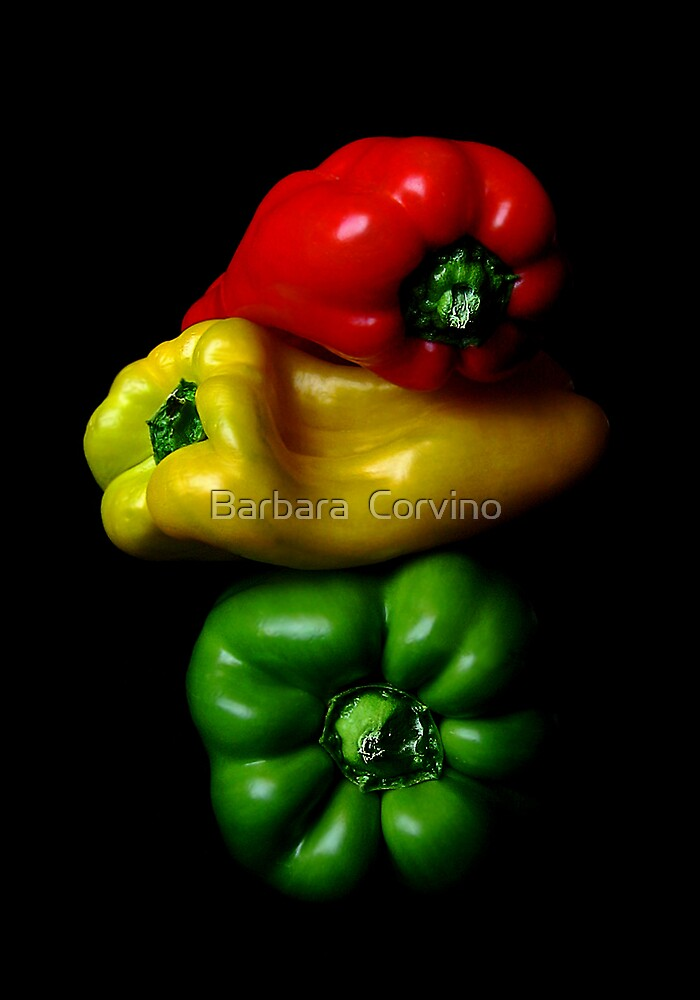 The traffic light by Barbara  Corvino