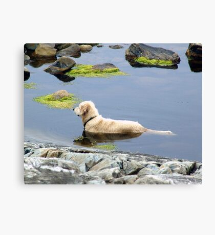 Saul in the Water Canvas Print