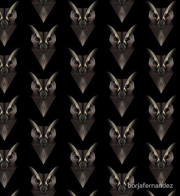 Owl by borjafernandez