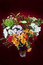 Fabulous Flowers by DonDavisUK