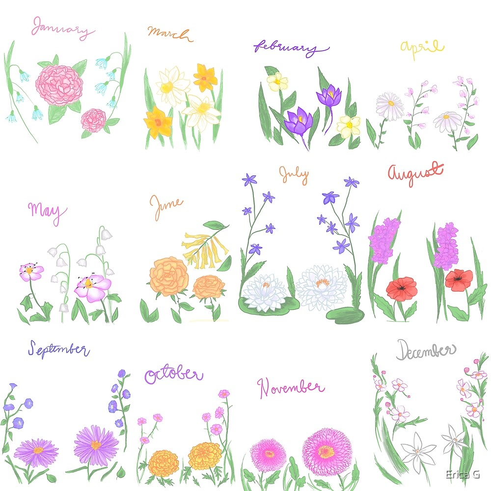 Birthday Month Flowers By Erica G Redbubble