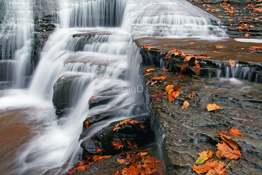Autumn Rush by BigD