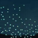 Fireflies by Sophersgreen