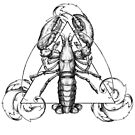 Top Lobster - triangle by CandelaRiveros