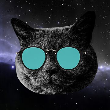 Cat with sunglasses by tomasantunes