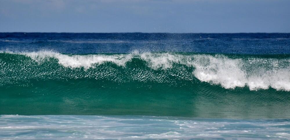 Bondi Beach Wave by Dean Bailey